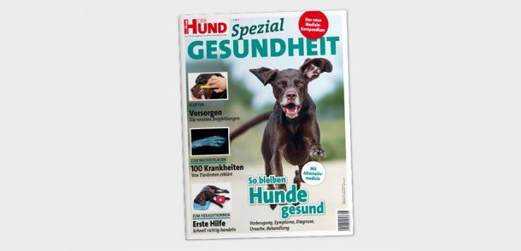 DerHund Cover Spezial Gesundheit