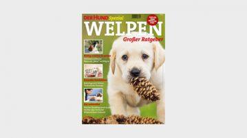 DerHund Cover Spezial Welpen