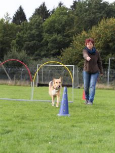 Petra und Sally Hoopers Agility