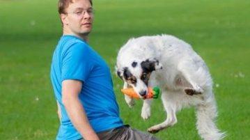 Hund und Mensch beim Crossdogging