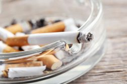 Passivrauchen Zigaretten schädlich für Hunde
