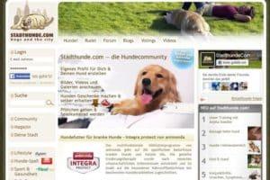 Startseite des Internet-Auftritts von stadthunde.com