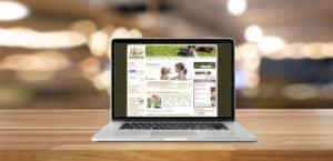 Das Portal stadthunde.com gehört jetzt zu DER HUND
