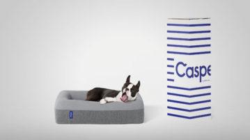 Hundebett Casper