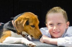 Flohbekämpfung bei Kindern im Haushalt
