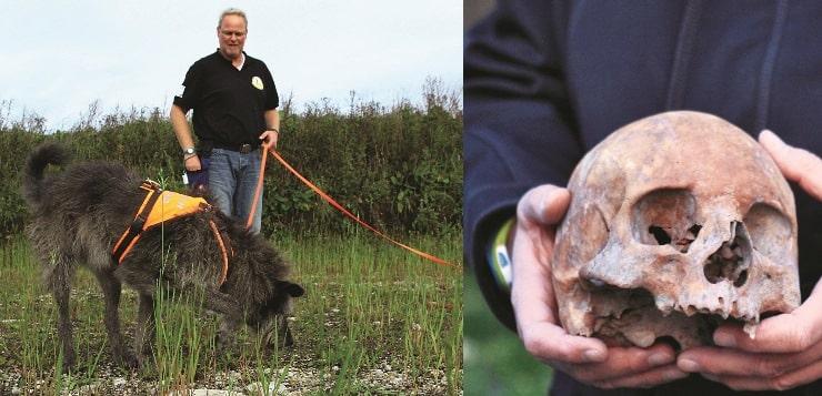 Archäologiehund Flintstone sucht menschliche Knochen.