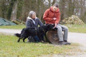 Training mit Tierschutzhund aus Rumänien