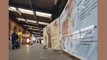 Banner-Aktion für Tierheimtiere am Bahnhof Bonn