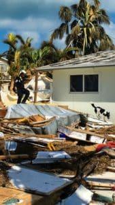 Suchhund und Mensch in den Trümmern eines Hauses