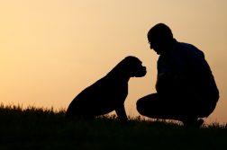 Silhouette Mann mit Hund
