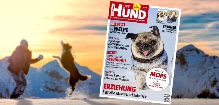 Ab dem 7. Februar am Kiosk: Ausgabe 03/2018 von DER HUND