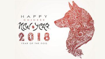 2018 ist das chinesische Jahr des Hundes