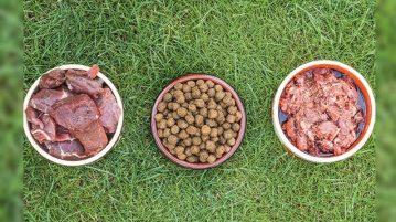 verschiedene Hundefuttersorten in Näpfen