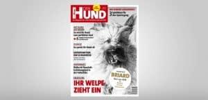 Cover 6/18 von DER HUND