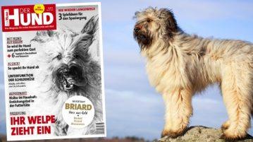Hunderasse Briard, Cover der Ausgabe 6/18 von DER HUND