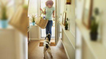 Hund begrueßt Frau an Haustuer.