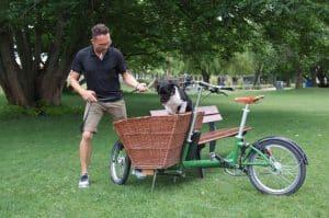 Hundetrainer lässt Hund kontrolliert in den Korb des Lastenrads hüpfen