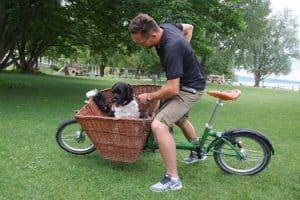 Hundetrainer neigt das Lastenrad, um den Hund im Korb daran zu gewöhnen.