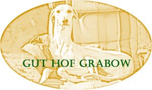 Logo_Gut_Hof_Grabow