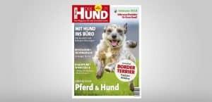 Cover DER HUND Ausgabe 7/2018