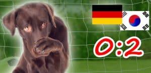 Vorrundenaus für Deutschland bei der Fußball-WM