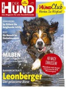 Cover des Magazins DER HUND, Ausgabe 9/18