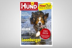 Der Hund 9/18 Cover
