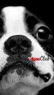 DH_Club_Smart_6_2250x4000