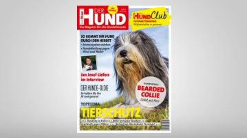 Ausgabe 11/18 von DER HUND