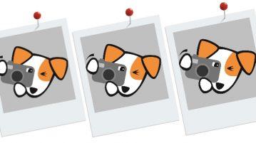 Illustration eines Hundes, der ein Foto schießt