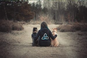 Frau mit zwei Hunden sitzt mit dem Rücken zur Kamera