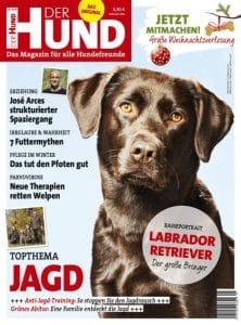 Cover DER HUND 01/2019, brauner Labrador