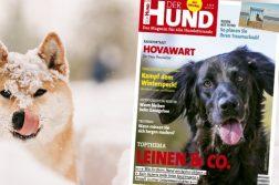 Ausgabe 3/19 von DER HUND