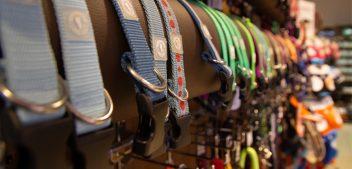 Halsband, Leine & Co.: Manufakturen in Deutschland
