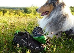 BAAK Dogwalker Schuhe
