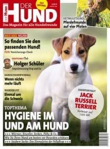 Jack Russell Terrier ziert Ausgabe 4/19 von DER HUND