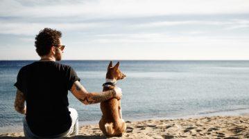 Mann und Hund sitzen am Strand