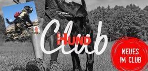 Neu im Club: Infos über Hundepacktaschen