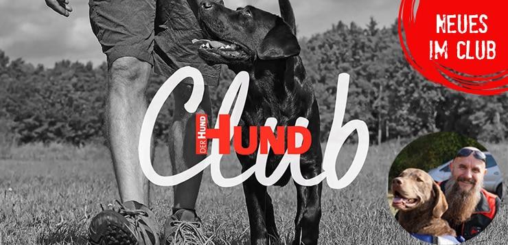 Neu: Dreieckstraining mit Hundetrainer Holger Schüler