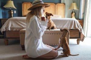 Frau interagiert mit zwei Hunden