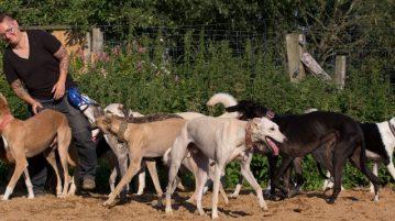 Ines Kivelitz mit einem Teil ihrer Hunde