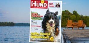 Cover von Der Hund 7/19 zeigt einen Berner Sennenhund im Wasser