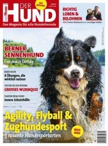 Das Cover von DER HUND 7/19 zeigt einen männlichen Berner Sennenhund im Wasser