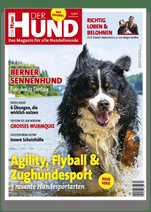 Lese Jetzt 3 Ausgaben Gratis Der Hund