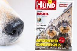 Cover der Ausgabe 8/19 von DER HUND