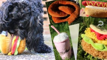 Hundespielzeug in Fast-Food-Form