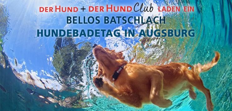 Kommt zum DER HUND Club und Leser-Treffen → Hundebadetag Augsburg