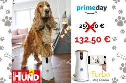 Prime Day Furbo Angebot