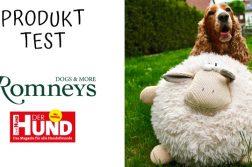 Hund mit Spielzeug-Schaf