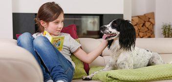 Arthrose beim Hund – Keine Angst vor dem Winter!